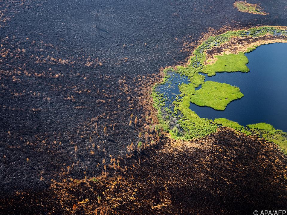 Brände verursachen in Ostsibirien schwere Schäden