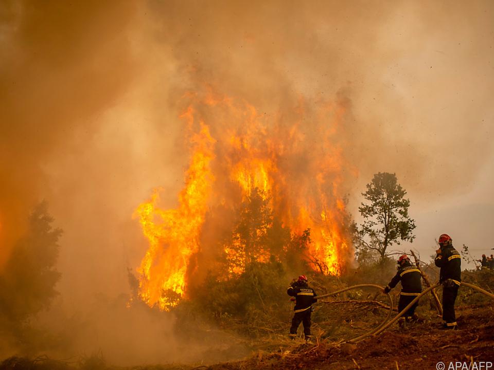 Die Feuer auf Euböa haben noch nicht genug