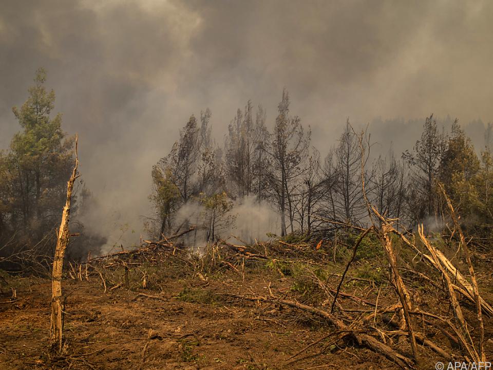 Die Lage auf stark betroffenen Insel Euböa hat sich verbessert.