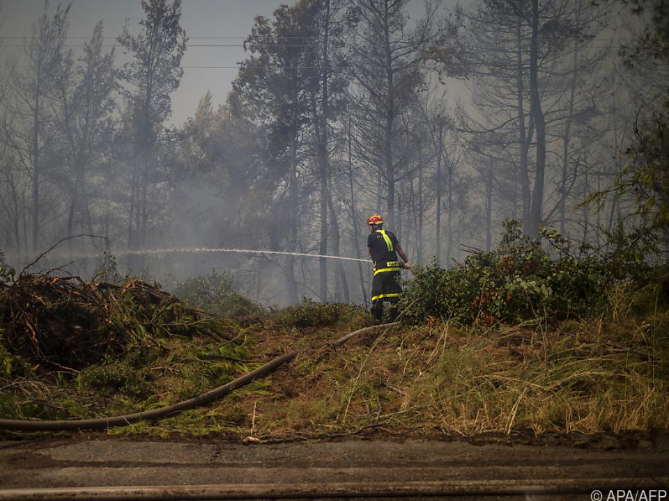 Leichte Besserung der Situation bei Mittelmeer-Waldbränden