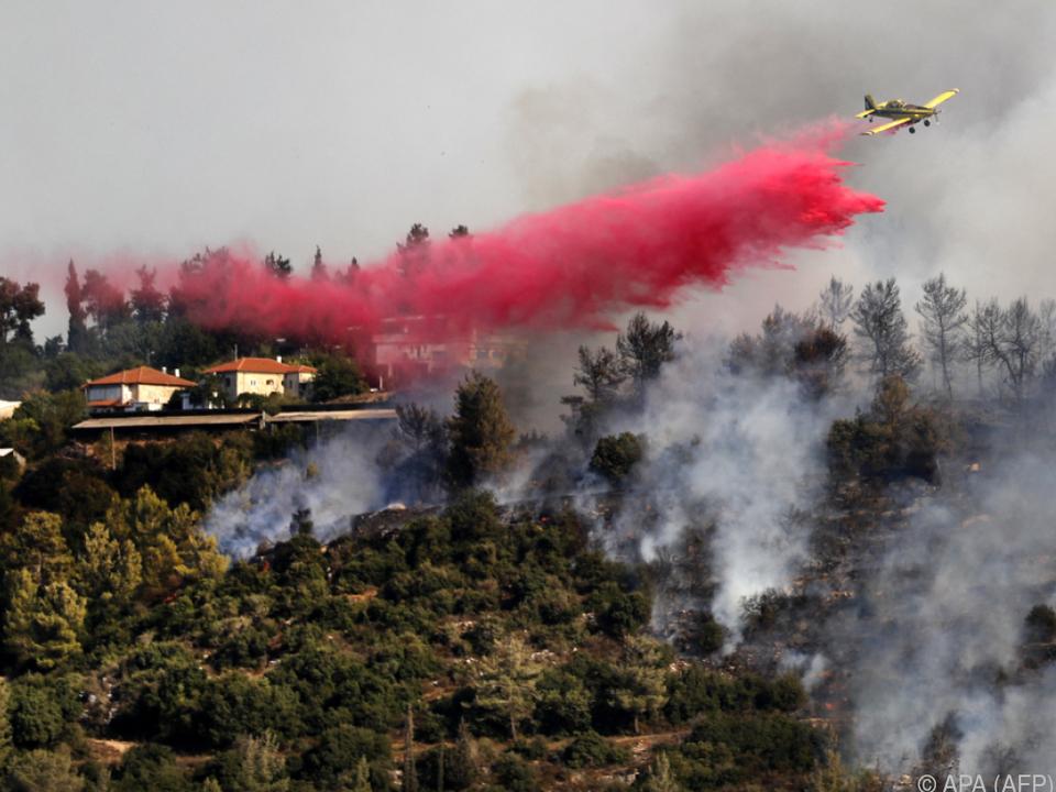 Löschflugzeug bekämpft Waldbrand bei Jerusalem