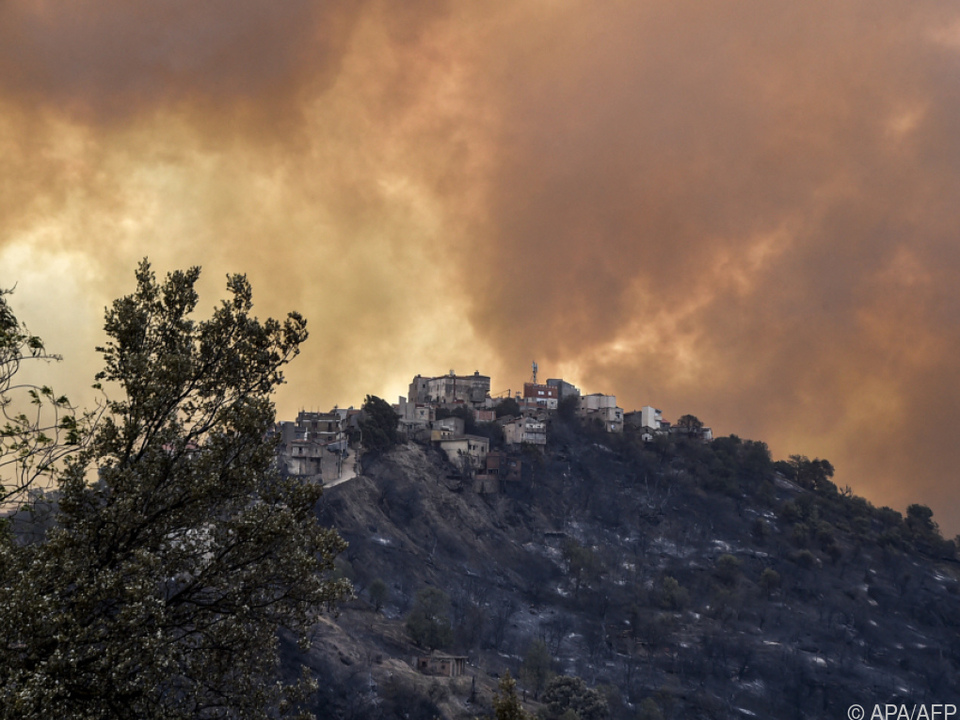 Mehr als 100 Waldbrände wüteten in Algerien