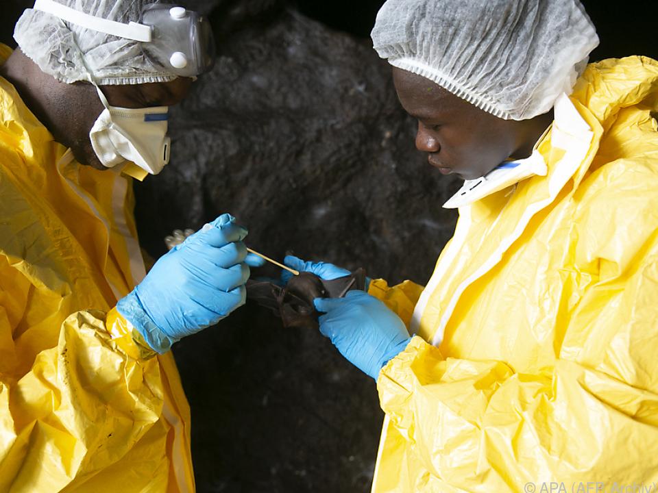 WHO: Ebola-Fall in Abidjan \