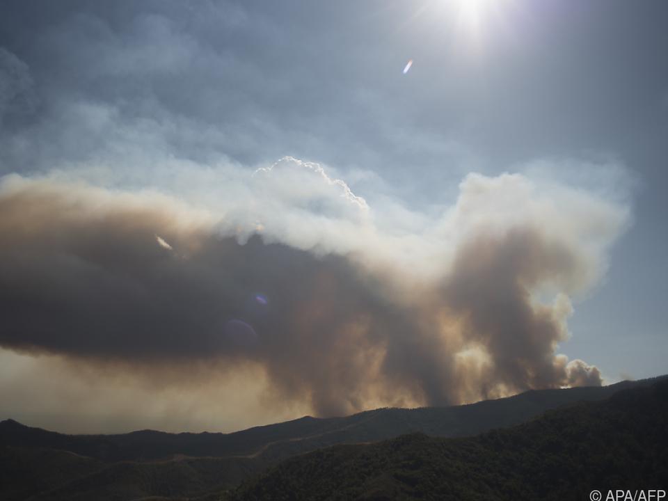 Die Brände hinterließen eine Schneise der Verwüstung