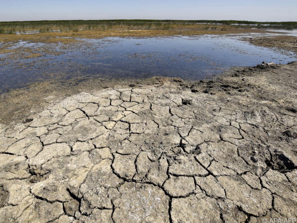 Dürren senken auch die Produktivität eines Landes