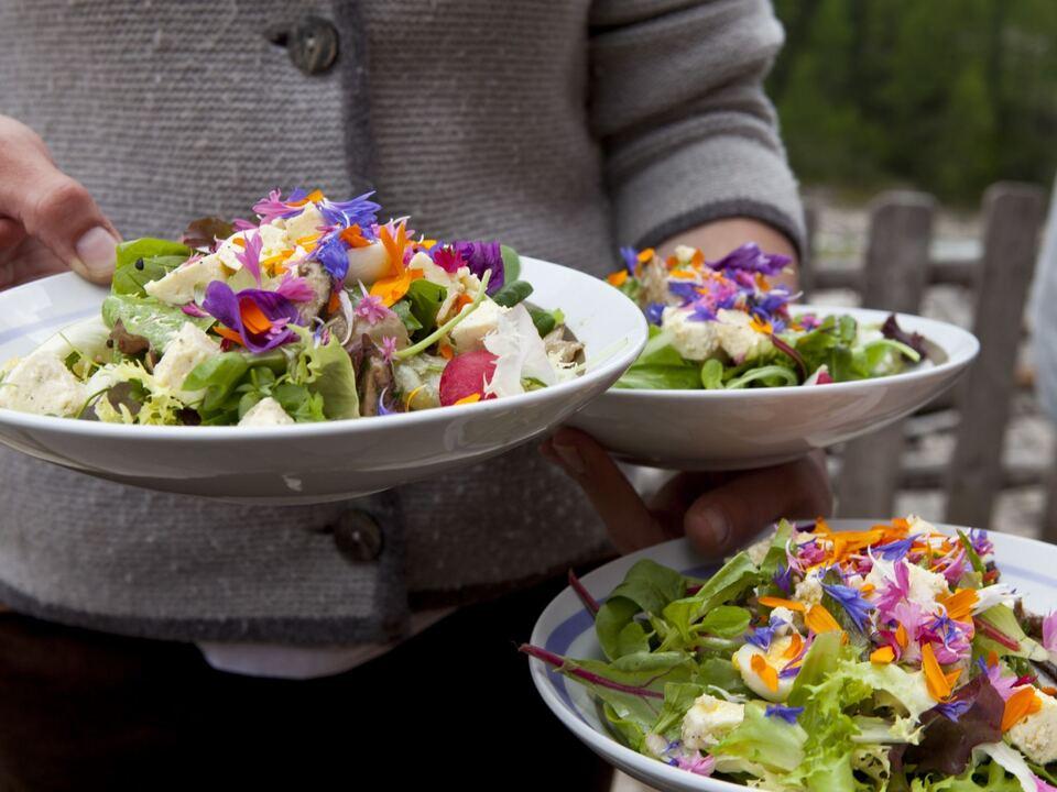 Salat aus dem Garten der Mitterkaseralm im Schnalstal Sustainability(c)IDM_Damian_Pertoll