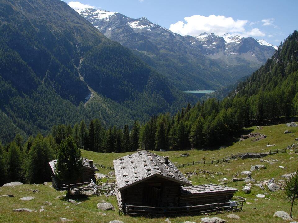 Foto: Nationalpark Stilfserjoch/Gianni Bodini)NP Stilfserjoch_Gianni_Bodini